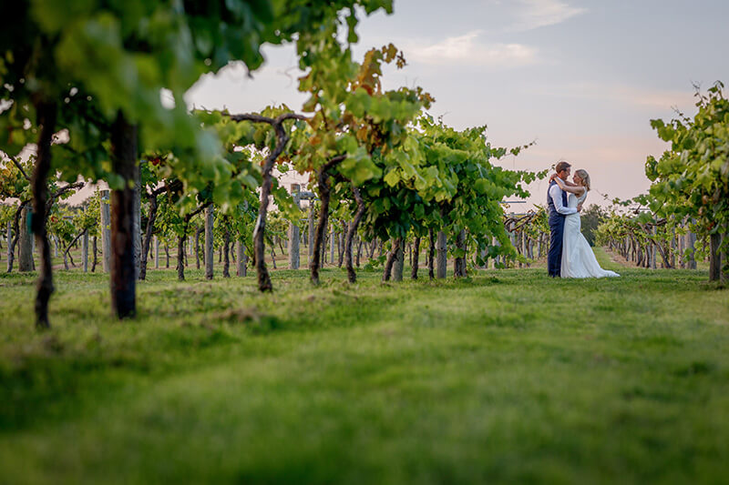 Bride and groom wedding day in the vines