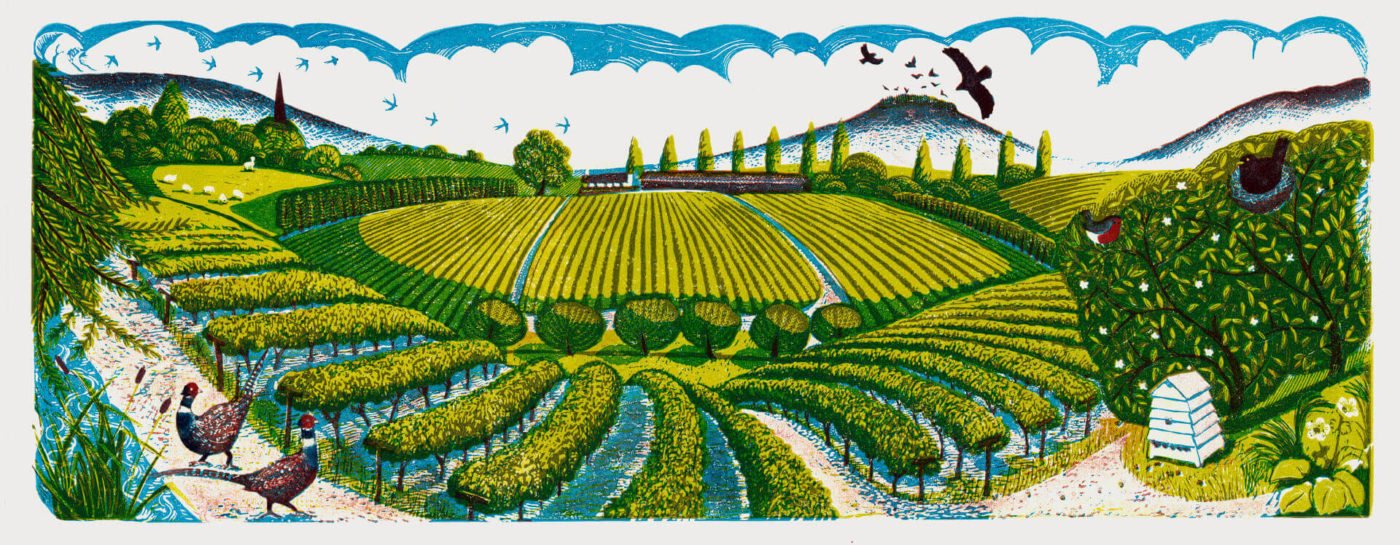 Three Choirs Vineyards Label Illustration