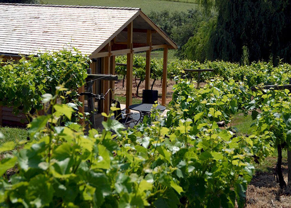 Three Choirs Vineyards Luxury Lodge Hidden in the vines