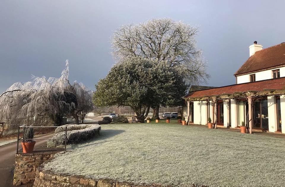 brasserie-in-frost-2