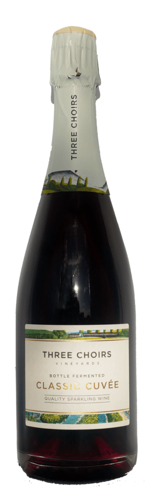 Regent Red Sparkling Wine 2016 by Three Choirs Vineyards